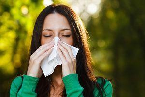 Алергія на амброзію лікування сучасними ліками - таблетками і уколами