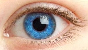 очей-людини
