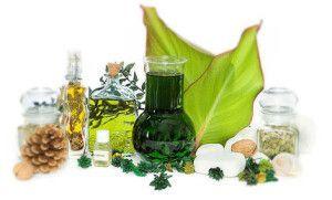 Цілющий вплив ефірних масел на здоров`я людини.