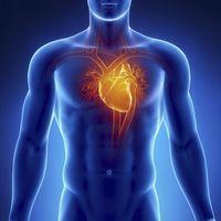 Інструкція для препарату «аденома-гран»: склад, показання, дозування