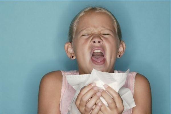 Алергія на пил що робити