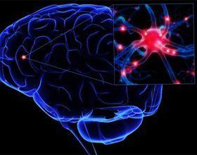 Народні засоби для поліпшення мозкового кровообігу