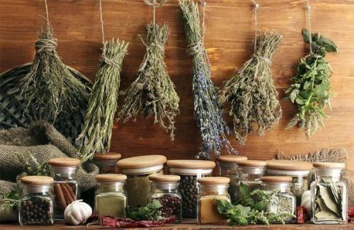 Народні засоби в лікуванні пахової грижі