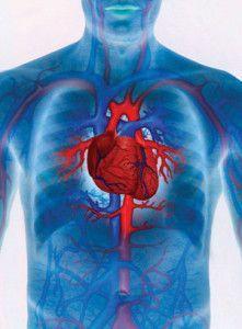 Нові методи діагностування серцевих захворювань