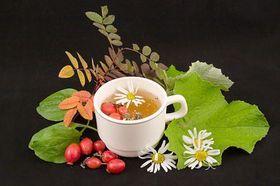 Користь трав`яних чаїв для здоров`я