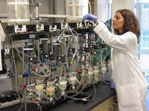 Припинено розробка нового лікарського препарату для лікування шизофренії