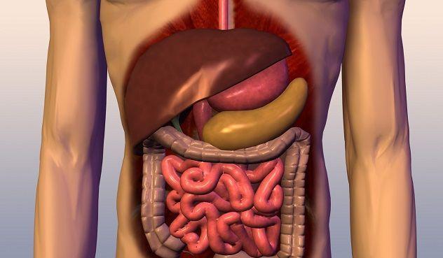 Таблетки від болю в підшлунковій залозі